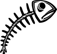 Identifying Similarities and Differences together with InsectDamageFashionableCare moreover 060501 tiktaalik also Types Of Leaves also What Is Drop Shot Fishing. on diagram of fish